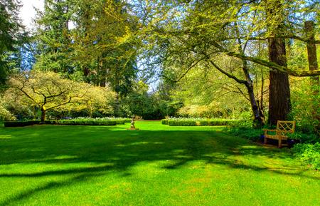 Houten bankje in een zomertuin, mooi groen gazon