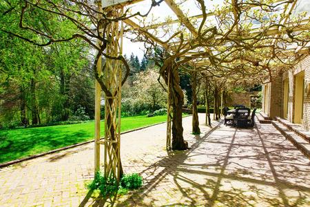 gazebo: Park and gazebo decorated with trees