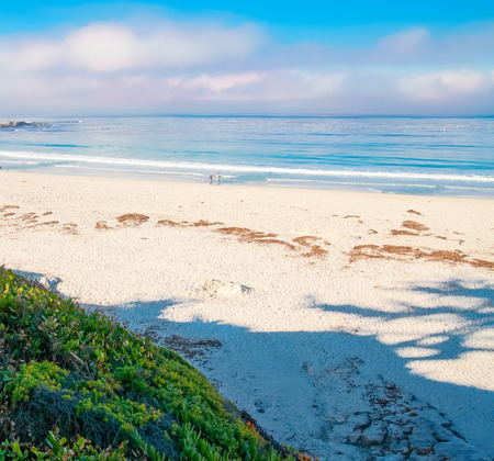 white sand: White sand with blue water near carmel, California with couple walking.