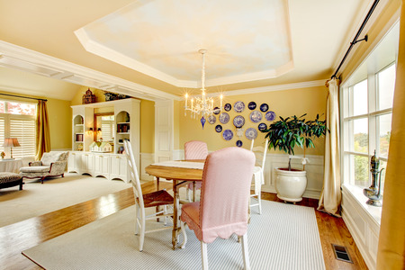 Cozy yellow American living room interior design with plates and classic furniture.