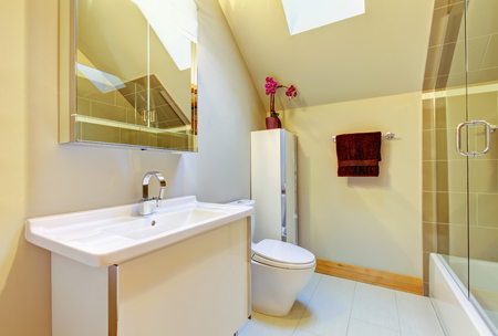 vaulted ceiling: Small beige bathroom with shower, toilet and vaulted ceiling
