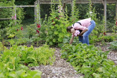 slings: Young father and baby with baby Sling Carrier pull the beets in the garden