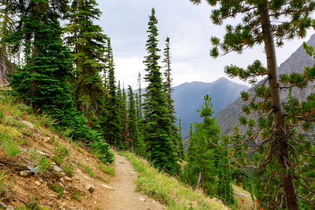 dirtroad: Nice ountain landscape with a footpath for hiking