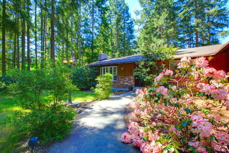 rambler: American rambler house exterior. View of walkway with flower bed and lots of greenery. Stock Photo