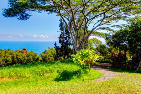 Un jardin tropical avec des fleurs et des palmiers surplombant l'océan avec un ciel bleu. Garden Of Eden, Maui Hawaii
