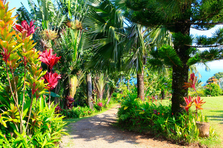 tropicale: Un jardin tropical avec des fleurs et des palmiers surplombant l'océan avec un ciel bleu. Garden Of Eden, Maui Hawaii