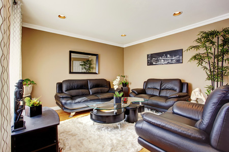 sofa set: Cozy and luxury living room with black leather sofa set and modern coffee table. Also lots of flower pots and decorative tree pot.