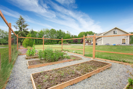 fenced in: Small vegetable garden with risen beds in the fenced backyard near house. Stock Photo