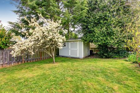 Omheinde achtertuin met gras gevuld tuin en een klein schuurtje. Weergave van bloeiende bomen.