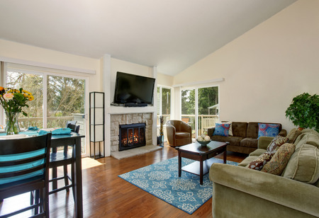fireplace living room: Excellent living room with blue rug, hardwood floor, and fireplace. Stock Photo