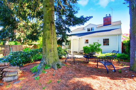 yard: House exterior. Fenced back yard with patio area and big pine trees.