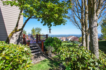 back yard: Back yard with lots of greenery, shrubs, trees and view of walkout deck.