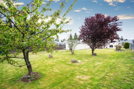 arboles frutales: Bonito jardín del patio trasero amplio, con árboles frutales y casa blanca en el fondo.