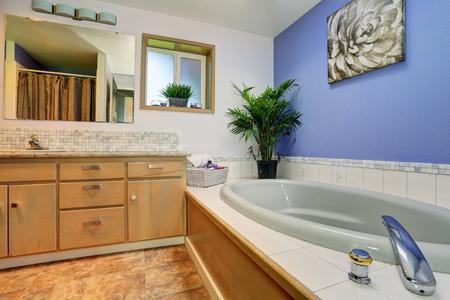 plant pots: Simple yet elegant blue bathroom interior with tile trim bath tub and decorative plant pots