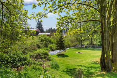 yard: Mountain river view in green back yard of American rambler. Lots of mossy trees by the water. Stock Photo