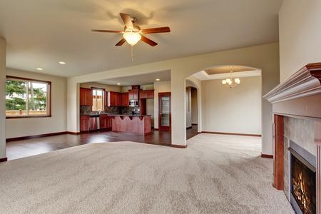 open floor plan: Open floor plan living room interior with carpet floor and fireplace connected with kitchen
