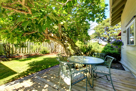 back yard: Back yard walkout deck with table set and big tree. Northwest, USA
