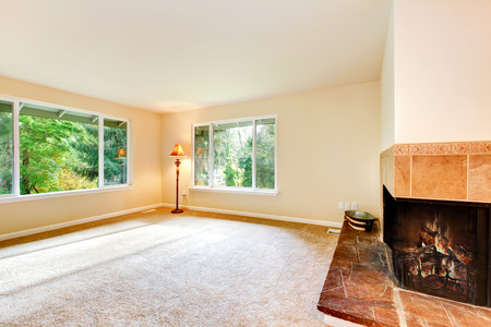 stone fireplace: Nice airy family room with carpet floor, metal floor lamp and built in  fireplace with stone trim. Northwest, USA