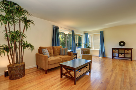 nice living: Nice living room in blue and brown colors with hardwood floor. Decorative palm tree in a wicker pot. Northwest, USA Stock Photo