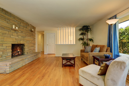 nice living: Nice living room in blue and brown colors with stone tile fireplace, hardwood floor. Decorative palm tree in a wicker pot. Northwest, USA