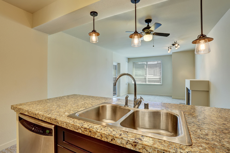 counter top: Close-up of double sink with granite counter top in modern apartment. Northwest, USA