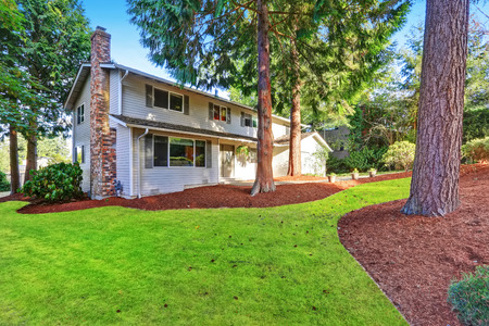 curb: Beautiful curb appeal of two story house with large fir trees in front. Northwest, USA.