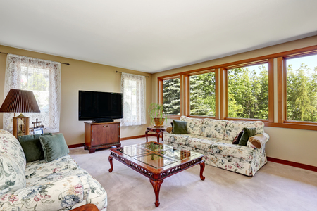 many windows: Traditional living room interior with tv set, carpet floor and many windows. Northwest, USA