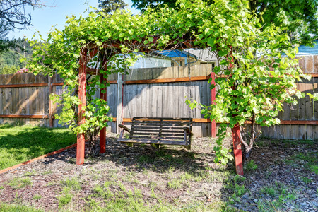 fenced: Hanging swing at fenced back yard with nice landscape desing. Northwest, USA