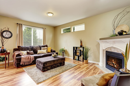 Cozy living room interior with fireplace and hardwood floor. Northwest, USA