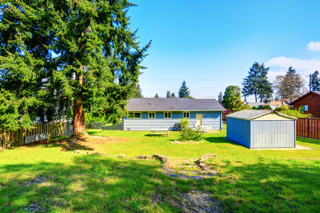 garden styles: Spacious back yard of blue house with small shed, big fir tree and grass filled garden. Northwest, USA Stock Photo