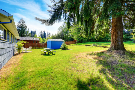 Spacious back yard of blue house with small shed, big fir tree and grass filled garden. Northwest, USA Stock Photo
