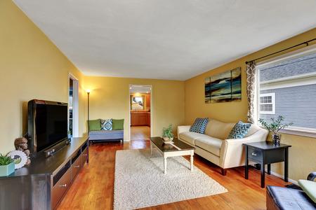 floor rug: Living room interior with hardwood floor, rug, and tv set. Northwest, USA