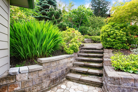 nice house: Nice landscape desing around the house. View of concrete stairs to garden at backyard.Northwest, USA