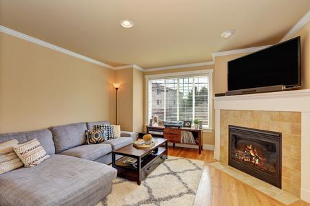 Pequeña pero acogedora habitación familiar con chimenea de esquina y sofá gris. Noroeste, Estados Unidos