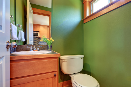 powder room: Green powder room with sink and toilet. Northwest, USA Stock Photo