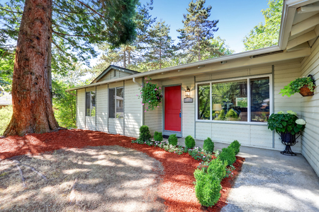 a lot: American rambler exterior with red entrance door and big fir tree in front. Northwest, USA