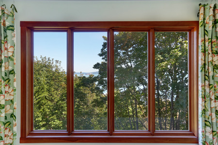 window pane: Close-up of Large four pane window with summer landscape. Apartment interior. Northwest, USA Stock Photo