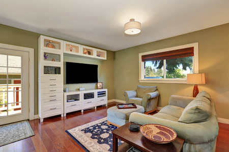 living room wall: Small cozy living room interior with olive sofa and white storage combination with TV. Northwest, USA