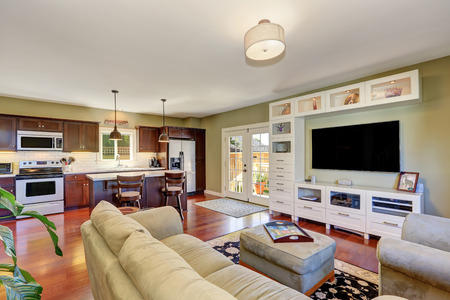 Small cozy living room interior with olive sofa and white storage combination with TV. Kitchen view. Northwest, USA 版權商用圖片