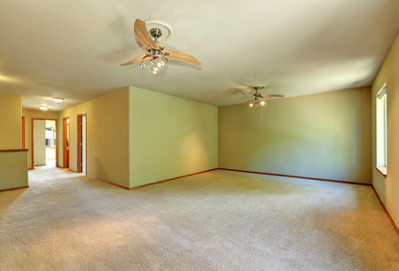 Unfurnished room with carpet floor, light green walls and lot of space. Northwest, USA Stock Photo