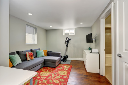 room accent: Sitting room interior with sport equipment and TV in the basement. There is a grey sofa with colorful pillows on a red floral accent rug. Northwest, USA