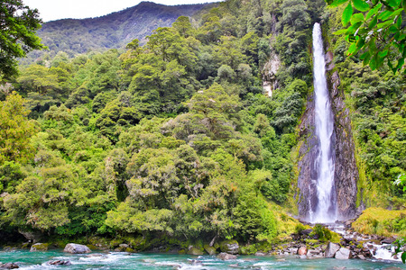 the south island: Waterfall in Fox Glacier in Westland National Park on the West Coast of New Zealands South Island