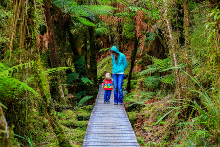 numerous: Mother with little daughter walking in the rain forest.  Haast, West Coast, New Zealand, Stock Photo