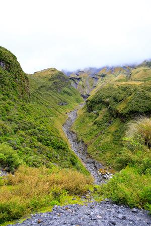egmont: Creeks created by lava flow on Mount Taranaki, New Zealand. Stock Photo