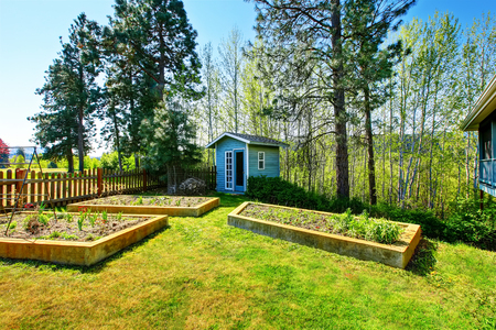 Wooden raised vegetable garden beds in the back yard. Northwest, USA Stock Photo