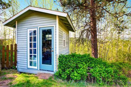 Kleine blaue Schuppen close-up. Waldlandschaft im Hintergrund. Northwest, USA Standard-Bild - 63740539
