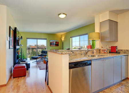 open floor plan: Open floor plan modern living room with green walls. View from kitchen. Northwest, USA Stock Photo