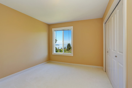 yellow walls: Empty room interior with yellow walls and one window. Also wardrobe. Northwest, USA