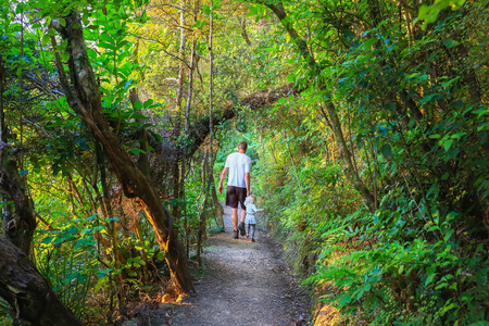 and hiking path: Father with little daughter on hiking path in the forest, Mount Manaia,  New Zealand Stock Photo