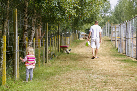 reisen: Father with daughter at the farm. Little girl is looking through the wire fence while her father is going away. Taupo area North Island New Zealand